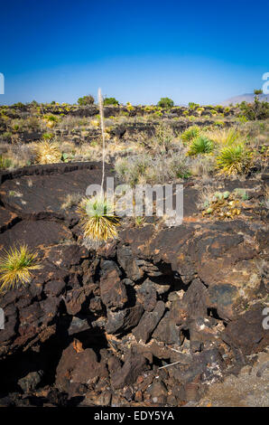 Lava tube on the Malpais Nature Trail, Valley of Fires Natural Recreation Area, Carrizozo, New Mexico USA - Stock Photo