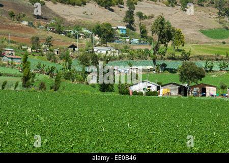 Dominikanische Republik, Cordillera Central, Constanza - Stock Photo