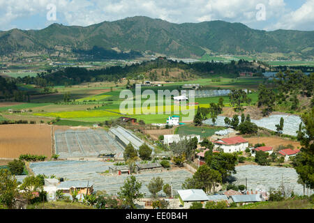 Dominikanische Republik, Cordillera Central, Constanza, Colonia Japonesa - Stock Photo