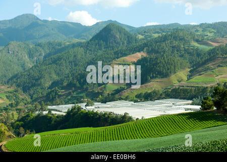 Dominikanische Republik, Cordillera Central, Landschaft beim Dorf El Convento südlich von Constanza an der Carretera - Stock Photo
