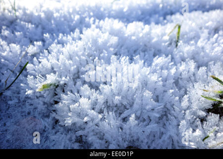 Schneekristalle im Winter, Snow crystals in winter, Winter, Snow, Crystals, Cold, Icy, Close-Up, Detail, December, - Stock Photo