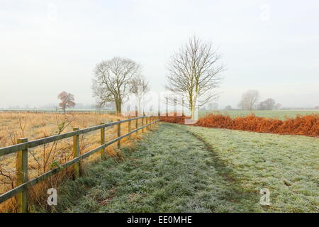 A frosty, misty, winter morning in the countryside with a grassy footpath between bracken ferns and a post and rail - Stock Photo