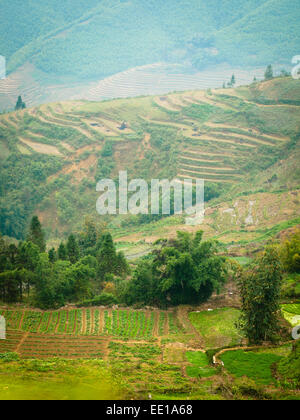 A view of fields and terraced rice paddies just outside of Sapa, Vietnam. - Stock Photo