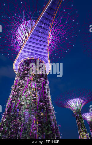 Gardens by the Bay at night, Singapore, Southeast Asia, Asia - Stock Photo