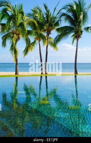 Maradiva villas resort and spa mauritius stock photo for Palm tree villas 1