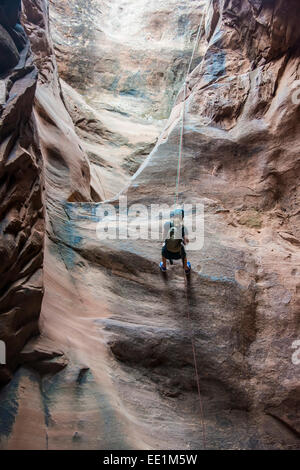 Woman rapelling down in slot canyon, canyoneering, Moab, Utah, United States of America, North America - Stock Photo
