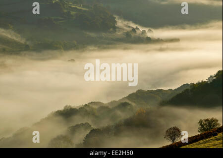 WYE VALLEY POWYS WALES EARLY MORNING AUTUMN MISTS OVER THE RIVER AND TREES - Stock Photo