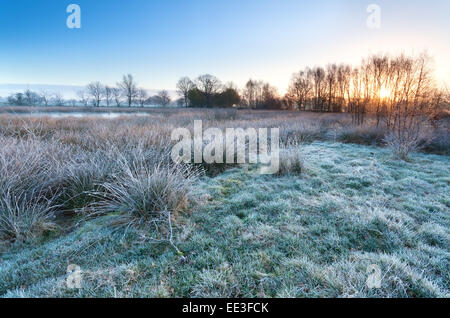sunrise over marsh in cold frosty morning - Stock Photo