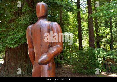 ROTORUA, NZL - JAN 12 2015:Wooden sculpture of a hiker in Redwoods – Whakarewarewa Forest in Rotorua, New Zealand. - Stock Photo