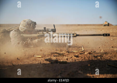 A US Marine special forces commando fires a .50 caliber Special Applications Scoped Rifle at a target 1,200 meters - Stock Photo