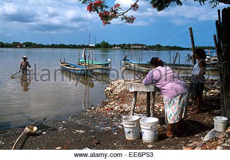 Mexcaltitan, Clothes washing in the lagoon - Stock Photo