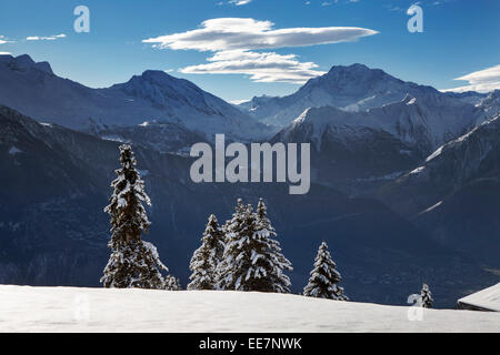 Mountains seen from Riederalp and snow covered spruce trees in winter in the Swiss Alps, Wallis / Valais, Switzerland - Stock Photo