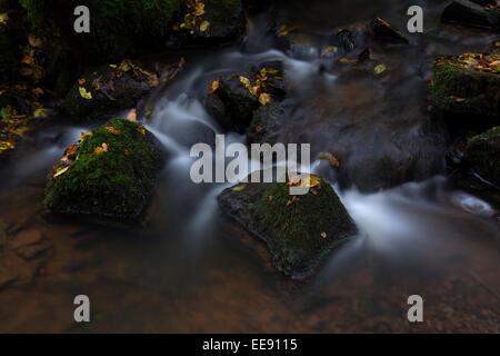 Hunsbachtal Birresorn, Stream in Germany - Stock Photo