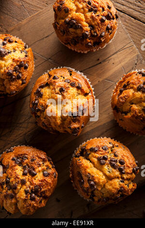 Homemade Chocolate Chip Muffins Ready for Breakfast - Stock Photo