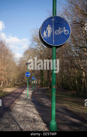 Cycle and pedestrian paths amongst trees, Parkwood, University of Kent on a sunny day showing blue signs on green - Stock Photo