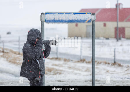 Woman taking pictures off Route One, The Ring Road, South Coast, Iceland. - Stock Photo