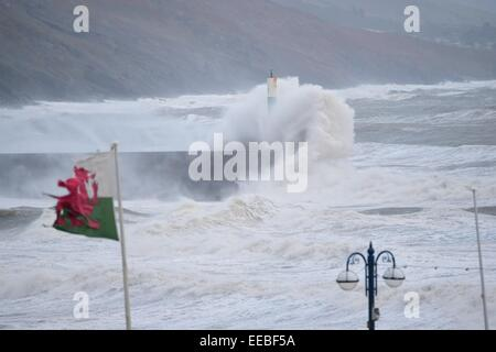 Aberystwyth, Wales, UK. 15th January, 2015. UK Weather: A battered and torn welsh flag flies as gale force winds - Stock Photo