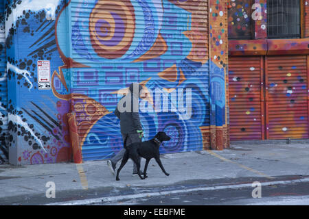 Man walks his dog past murals painted on side of buildings in Williamsburg,  Brooklyn, NY. - Stock Photo