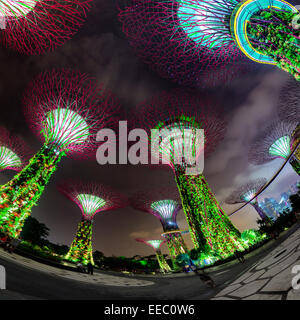 Fisheye shot of the many, brightly illuminated towers at Gardens by the Bay in Singapore, against a cloudy night - Stock Photo