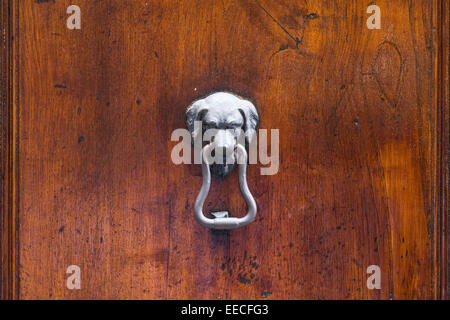 A metal dog head knocker on a wooden door - Stock Photo