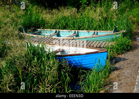 Two rowing lake boats tied up among reeds on a Lough Derg In Tipperary Ireland - Stock Photo