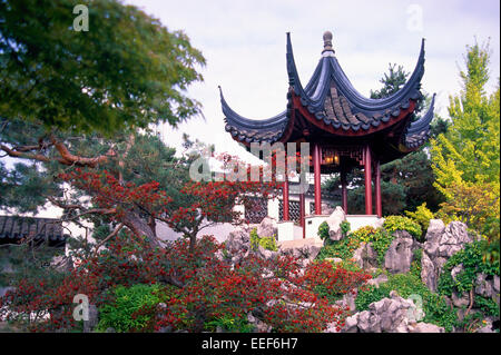 Dr. Sun Yat-Sen Classical Chinese Garden in Chinatown, Vancouver, BC, British Columbia, Canada - Chinese Pagoda - Stock Photo