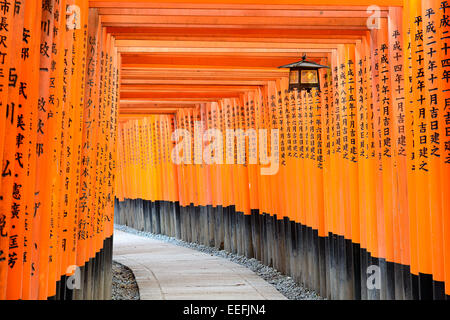 Fushimi Inari Shrine torii gates in Kyoto, Japan. - Stock Photo