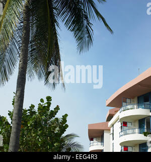 Tropical resort balconies under a palm tree - Stock Photo