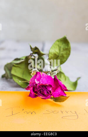 Dried roses on a wooden table - Stock Photo