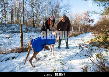 Tredegar, South Wales, UK. 18th January 2015. A couple of friends take Brian, a 14 year old greyhound for a walk - Stock Photo