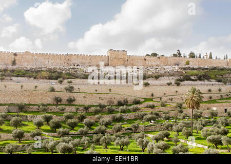 Golden gate to old Jerusalem city and Kidron Valley . Israel . - Stock Photo