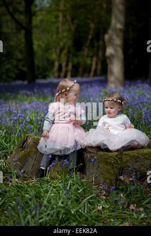 Two girls sitting on a tree stump in a wood full of bluebells in England. - Stock Photo
