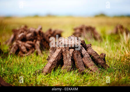 pile of irish peat turf fuel drying in the bog for home use - Stock Photo