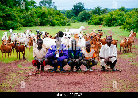 Portrait of young shepherds with their goats, Mali - Stock Photo