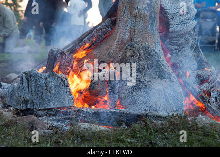 Campfire and heat - massive tree trunks burning at high temperatures - Stock Photo