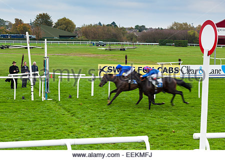 Tight finish as two horses and jockeys approach the finishing line at Leicester racecourse. 27 October 2014