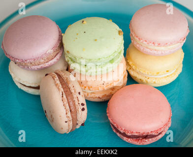 A plate of colourful French macarons from the Duchess Bake Shop in Edmonton, Alberta, Canada. - Stock Photo