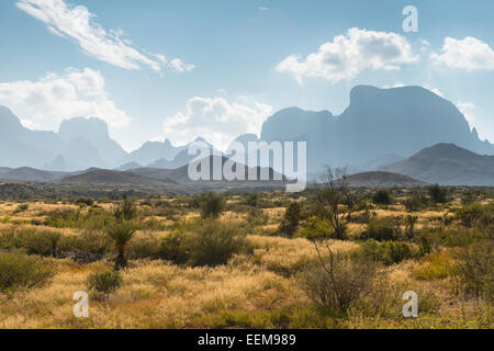 Desert landscape, Big Bend National Park, Texas, United States - Stock Photo