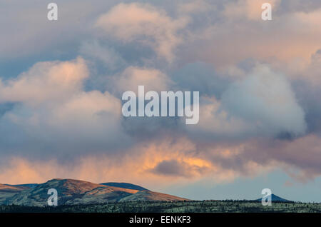 evening light im Alvdal Vestfjell, Hedmark Fylke, Norway, September - Stock Photo