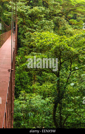 High suspension bridge allowing tourists to view the wildlife in the forest canopy. Monteverde Biological Reserve, - Stock Photo