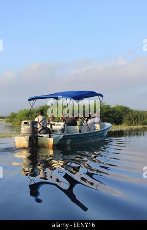 Tourists Enjoying An Early Morning Boat Trip On The Lagoon At Crooked Tree Wildlife Sanctuary, Belize - Stock Photo