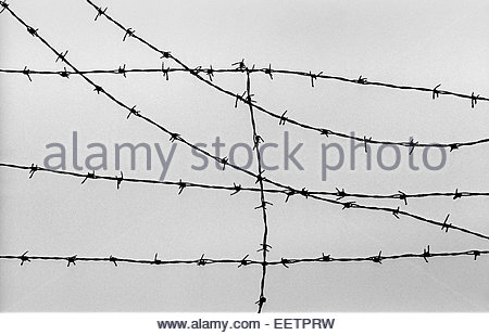 The wire fence to Buchenwald Concentration Camp, Germany Stock Photo ...
