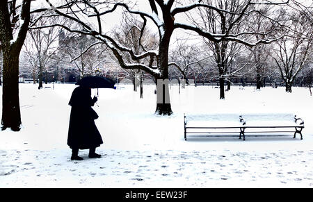 New Haven-- A woman walks along Temple Street through the light snow in the early afternoon on Monday. - Stock Photo