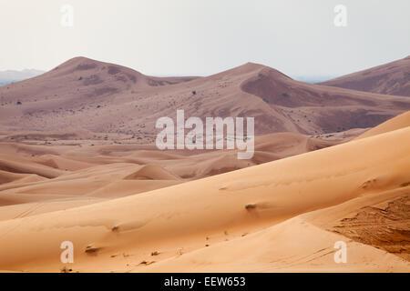 Sand dunes arabian desert saudi arabia stock photo royalty free desert wahiba oman desert landscape of arabian peninsula stock photo sciox Images