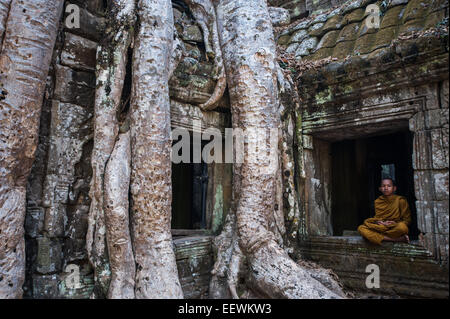 Young monk sitting in the windrow next to impressive tree roots at the ruined temple ,Ta Prohm at Angkor wat, Cambodia - Stock Photo