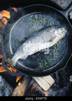 Fish in a frying pan over an outdoor fire. - Stock Photo
