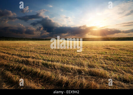 Sunbeams through clouds over the autumn field - Stock Photo