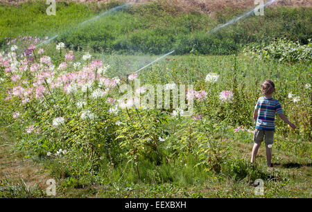 Young boy standing on a gravel road Stock Photo - Alamy
