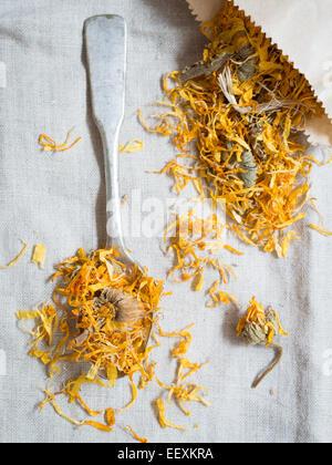 Dry calendula officinalis (pot marigold). - Stock Photo