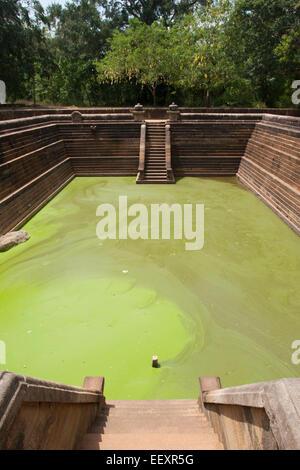 The monastery bathing pools at Ratnaprasada in Anuradhapura, Sri Lanka - Stock Photo